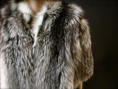 Copy of fox coat